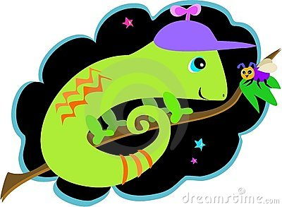Chameleon and Fly Friends