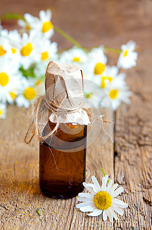 Free Chamomile Essential Oil Royalty Free Stock Photos - 57187998
