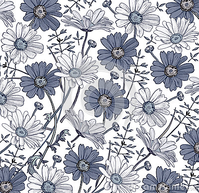 Free Chamomile Grass Wildflowers Vector. Drawing, Engraving. Beautiful Vintage Background Blooming White Blue Realistic Flowers. Royalty Free Stock Image - 75643166