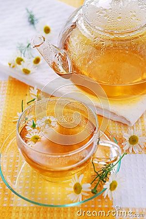 Free Chamomile Tea Royalty Free Stock Photos - 3165588