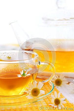 Free Chamomile Tea Stock Photo - 3188840