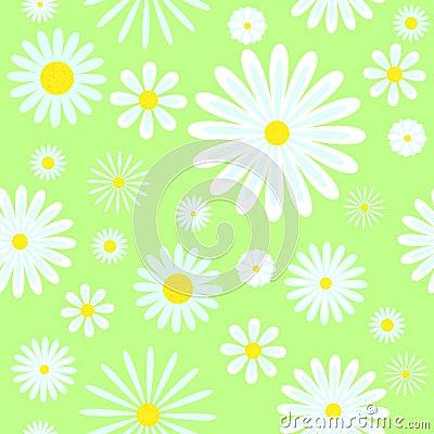 Chamomiles seamless pattern