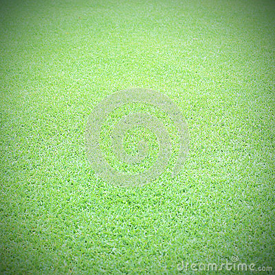 champ de vert de fond de terrain de football de gazon photo stock image 58308953. Black Bedroom Furniture Sets. Home Design Ideas