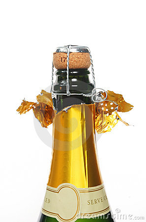 Free Champagne Bottle Royalty Free Stock Photos - 6086948