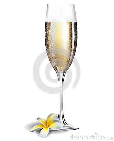 Free Champagne Glass And Frangipani Flover Stock Photos - 30793903