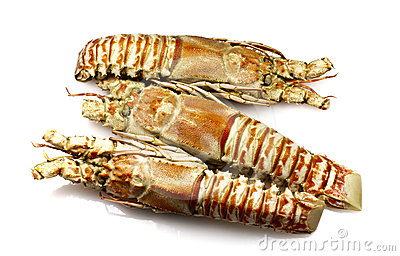 Champagne Lobster Royalty Free Stock Images - Image: 24348489