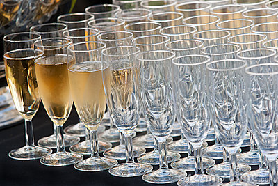 Champagne and Rows of Glasses