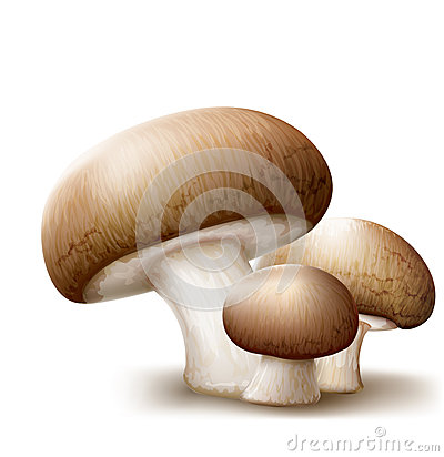 Free Champignons Mushrooms Stock Photos - 44057303