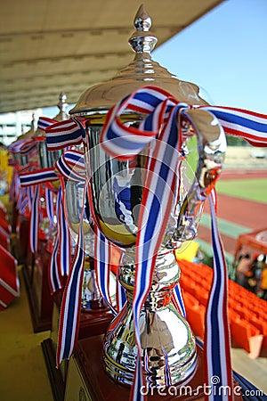 Free Championship Cups Stock Photo - 1793420