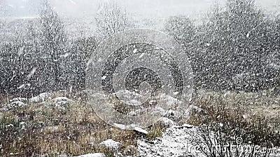 Changement saisonnier passage de l'hiver au printemps ou à l'été clips vidéos