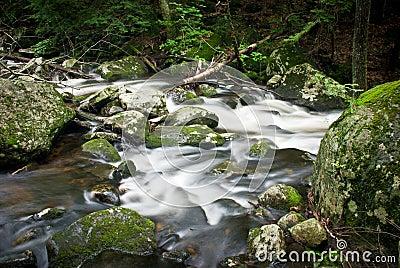 Chapel Brook Falls, MA, USA