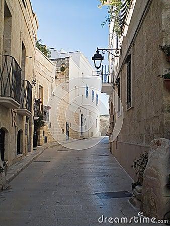 Characteristic alley. Monopoli. Apulia.