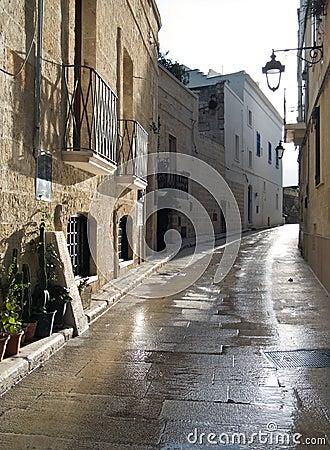Characteristic alley of Monopoli. Apulia.