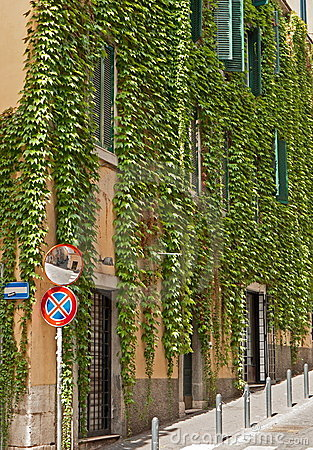 Characteristic street in Rome