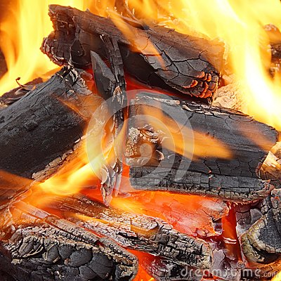Free Charcoal Burning In BBQ Or In The Fireplace Stock Photography - 41023852