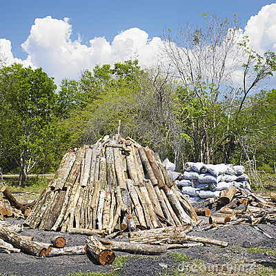 Free Charcoal Pile Royalty Free Stock Image - 17019086