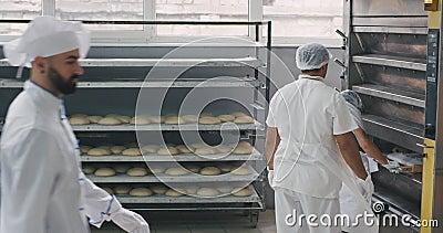 Chargement de pain cru sur l'étagère de la machine à four industriel dans une grande boulangerie, le boulanger principal a marc banque de vidéos