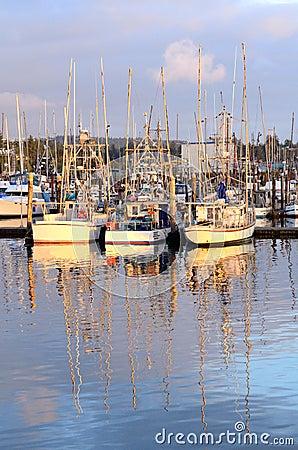 Charleston stock photography image 32473142 for Coos bay fishing