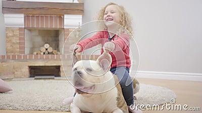 Charmante jeune fille blonde caucasienne tenant les oreilles de bulldog et riant Un petit enfant qui s'amuse avec son animal de c clips vidéos