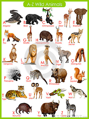 Free Chart Of A To Z Wild Animals Royalty Free Stock Images - 55756259