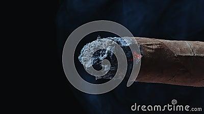 Charuto cubano de fumo azul video estoque