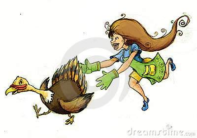 Chasing the Turkey