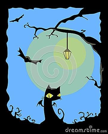 Chat noir de nuit