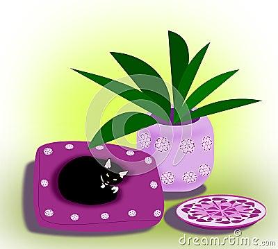Chat sur l oreiller