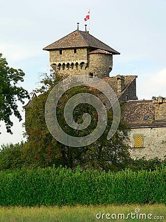 Chateau d Avully, Brenthonne ( France )
