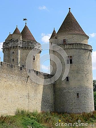Chateau de Blandy-les-Tours ( France )
