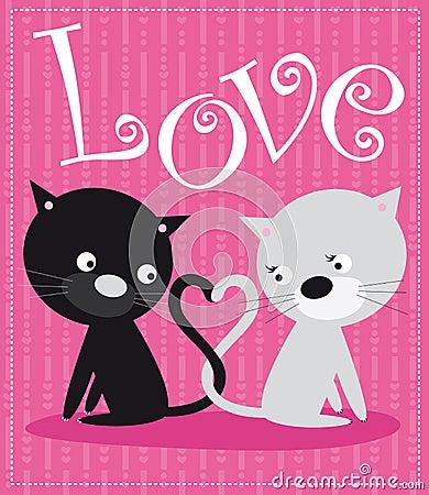 Chats dans l amour