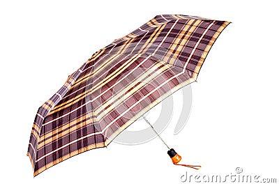 Checked woman umbrella