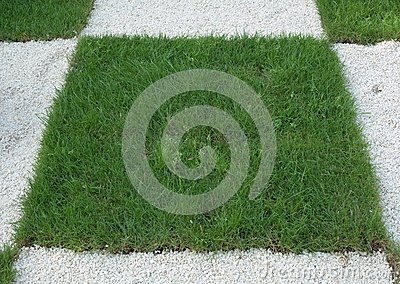 Checkered Grass