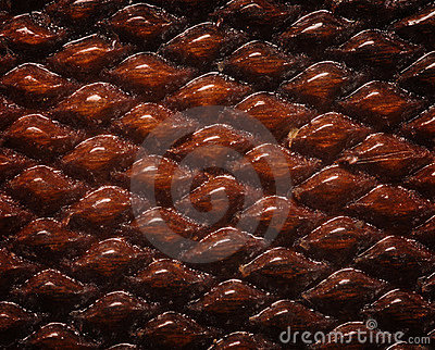 Checkered wood background