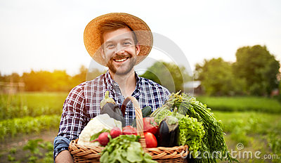 Cheerful farmer with organic vegetables Stock Photo