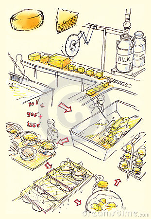 Cheese factory illustration