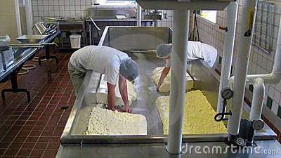 Cheese Making at Shelburne Farms VT Editorial Photo