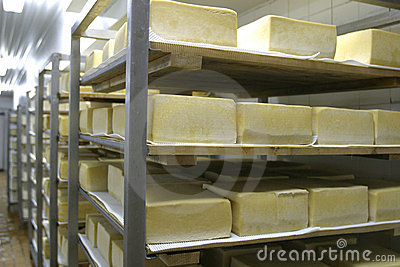 Cheese storage in dairy