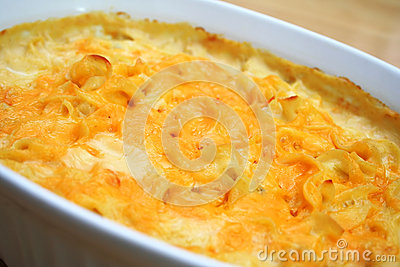 Cheesy Noodle Casserole
