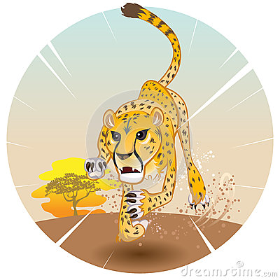 Cheetah King of Speed