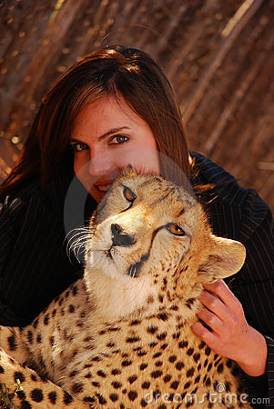 Cheetah pet