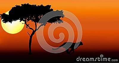 Cheetah running silhouette