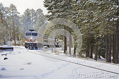 Chemin de fer de canyon grand en hiver