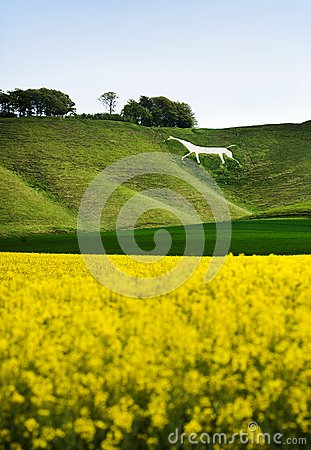 Cherhill White Horse, England