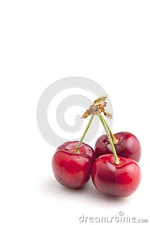 Free Cherries Stock Photography - 19770122