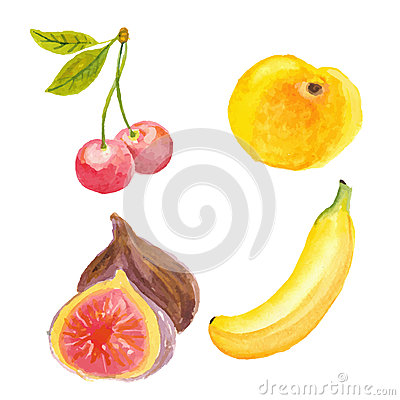 Cherries, apricot, figs and banana. Hand drawn in watercolor technique ...
