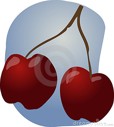 Cherries fruit illustration