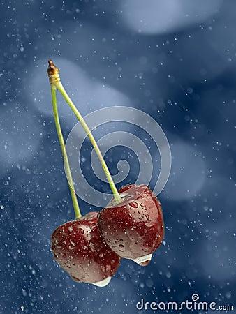 Cherries in the rain