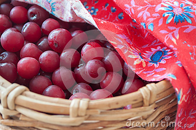 Cherries in wicker basket