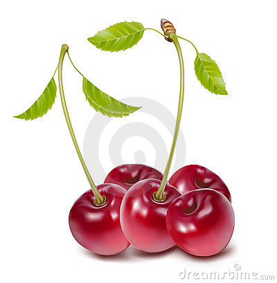 Free Cherries With Leaves Stock Images - 10770724